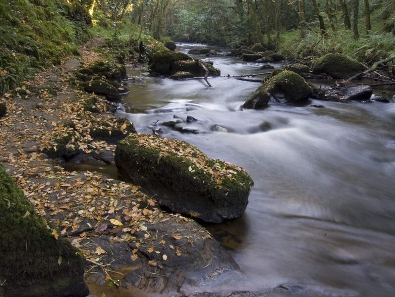 Things to do in Ballyhoura Country - Clare glens
